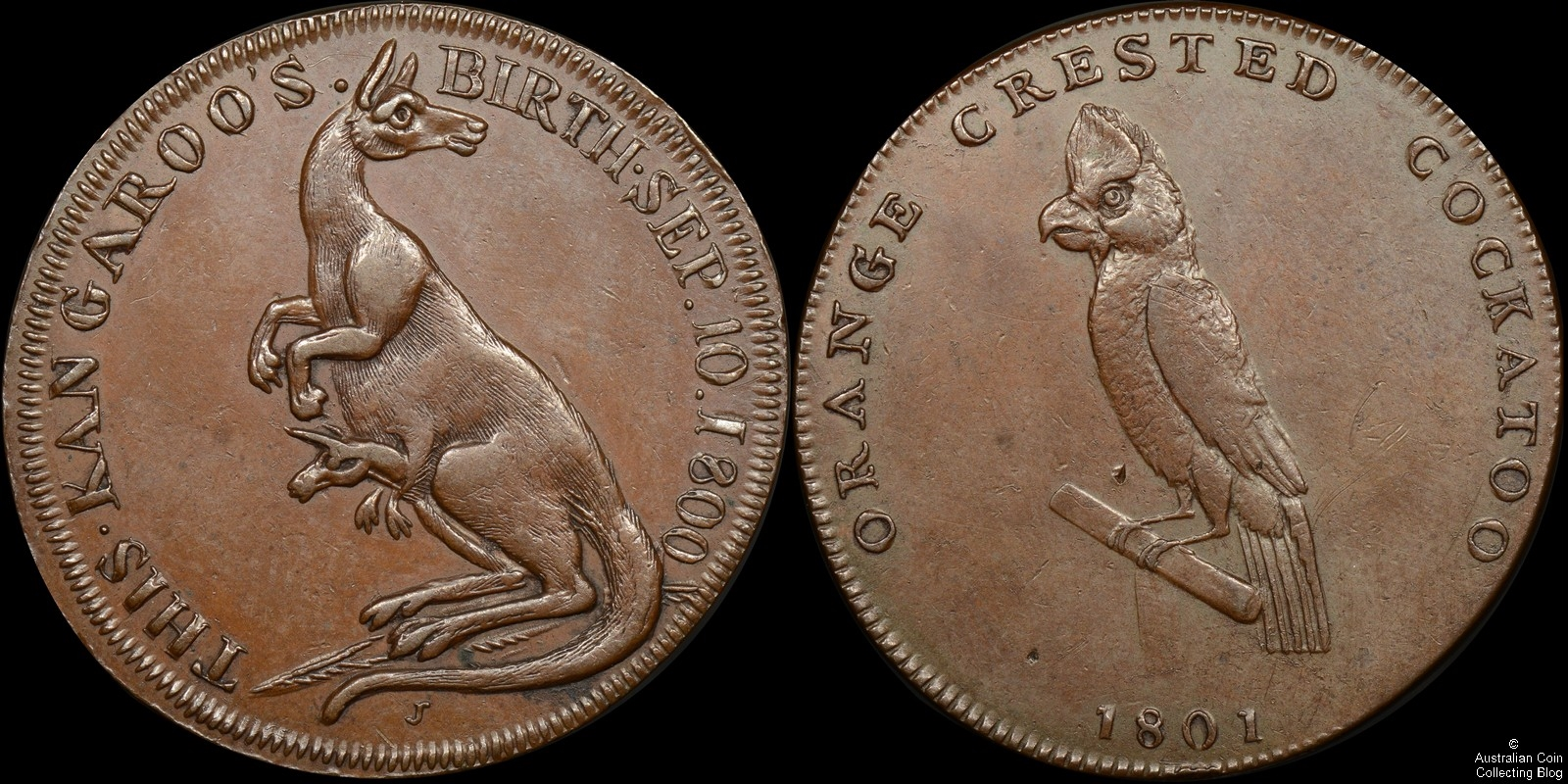 1801 Middlesex Farthing Pidcock's Zoo Token D&H 456 PCGS AU55